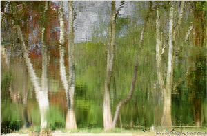 ...water-painting...of nature... by lisztikriszti