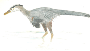 The Heron Raptor by Jeda45