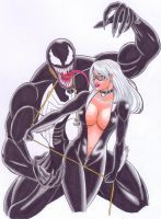 Black Cat and Venom by MikeMcelwee