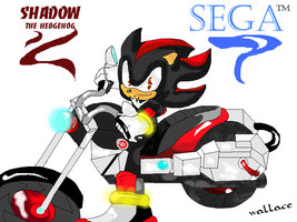 shadow e sega all stars racing by wallacexteam