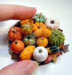 Miniature autumn ensemble of pumpkins and squashes by miniacquoline