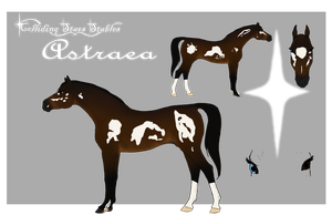 CSS Astraea by CollidingStarsStable