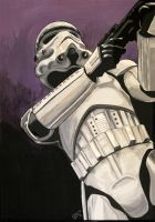 Stormtrooper by Elezar81