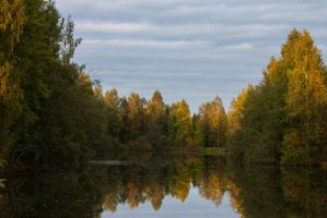 Trees Lake Reflection by ManicHysteriaStock