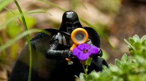 'Beautiful flower' - Darth Vader by ThanhDDanh