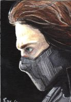 Marvel: The Winter Soldier by RyesAsylum27