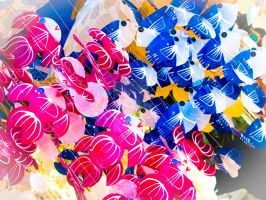 Plastic's fishes in Turkey by porTTRaits