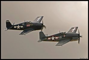 Planes of Fame 36 by AirshowDave