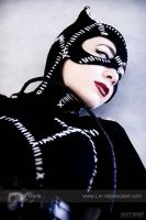 Catwoman _TiMBurton by dreamerl85