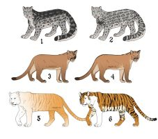 Big Cats Adopts by Saxargarm