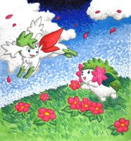 Shaymin - From the Sky by Porcubird
