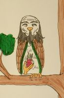 Uncle Iroh the Owl by HieiandKuramaLover