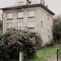 the old house and the lilac bush by snusmumrikenn