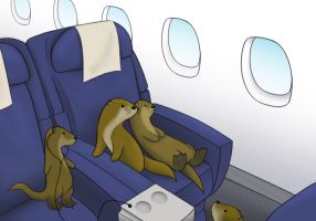 How Many Otters on a Plane by FangsAndNeedles