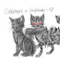 REQUEST: JayxCinder by dreampaw