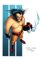 WOLVERINE by Roboworks