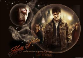 HARRY POTTER AND VOLDEMORT by VaLeNtInE-DeViAnT