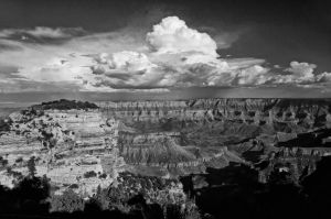 Grand View North Rim BW by EvaMcDermott