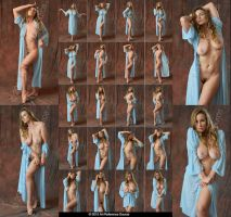 Stock:  Vassante Nudes With Vintage Robe by ArtReferenceSource