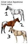 Appaloosa Sales (Great value!) - Price drop! by SandStoneArt