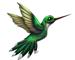 Hummingbird :COMM: by LupiArts