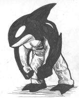 Killer Whale pirate free for adoptions by MrMatsui
