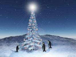 Christmas by narender