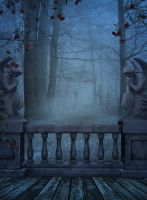 free background haunted forrest 4 by H-stock