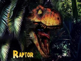 Raptor TLW by DsKoRn