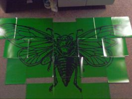 Absinthe Cicada phase 1 by Speciniff