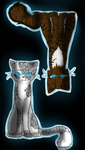 Ivypool and Hawkfrost by Mintleaf-99