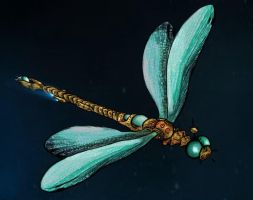 DragonFly- Final view by tite-pao