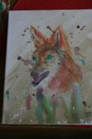 Coyote watercolor by souffle-etc