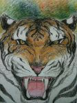 TYGER...(not by blake..but my version..) by raniganguly