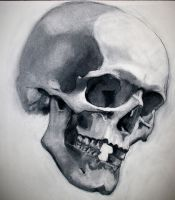 Charcoal and Bone IV by napoleoman