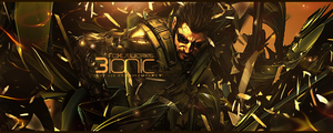 Request:Bionic by FoXusWorks