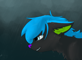 Crying In The Rain by Chiiboo