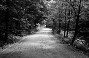 Lonely Road by Jinxx426