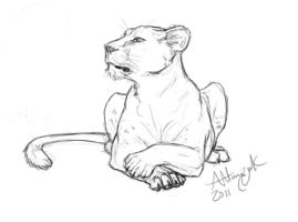 Attentive Lioness by Marcynuk