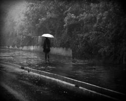 a rainy day and the loneliness by hidlight