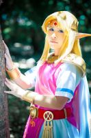 Princess Zelda cosplay from A Link Between Worlds by LayzeMichelle
