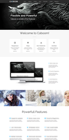 Caboom Powerful WordPress by wpthemes