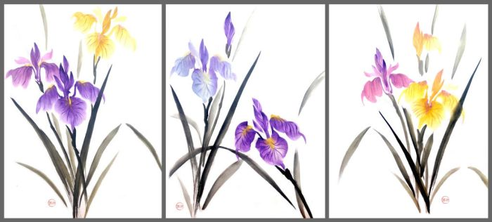 Sumie irises by bsshka