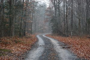 Gravel Road 1 by LateRose-Stock