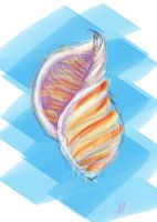Seashell by nipe77