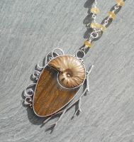seashell fosil necklace by thebluekraken