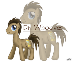 Doctor Whooves by Leibi97
