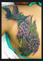 Hummingbird and Flower by Sean Ambrose by seanspoison