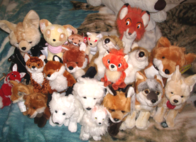 Fox plush collection by VengefulSpirits