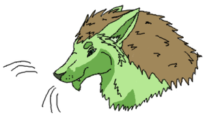 Headshots: Flash the Lupora by xX-NIGHTBANEWOLF-Xx